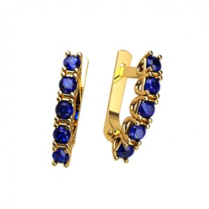 Earrings 40225