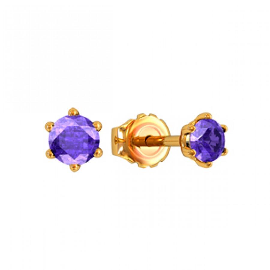 Earrings 310190
