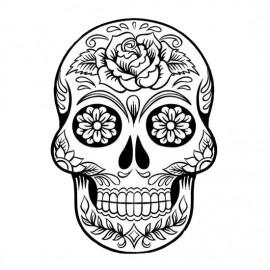 Skulls • Skeletons (18)